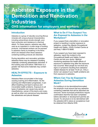 Picture of Asbestos Exposure in the Demolition and Renovation Industries