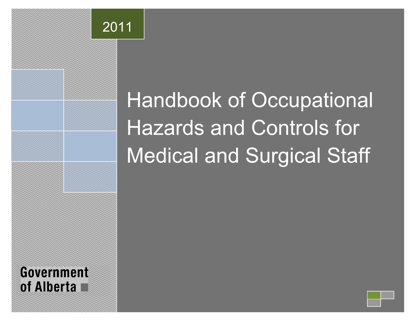 Picture of Handbook of Occupational Hazards and Controls for Medical and Surgical Staff