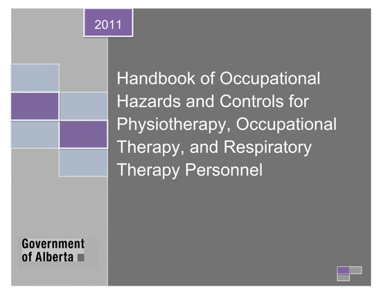 Picture of Handbook of Occupational Hazards and Controls for Physiotherapy, Occupational Therapy, and Respiratory Therapy Personnel