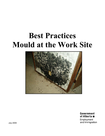 Picture of Best Practices: Mould at the Work Site