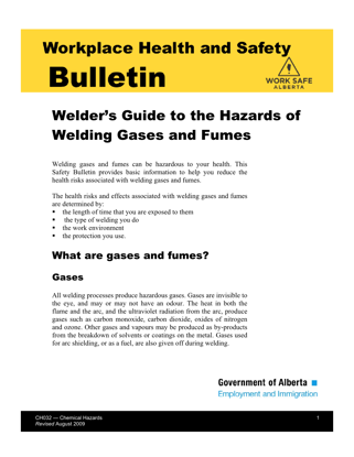 Picture of Welder's Guide to the Hazards of Welding Gases and Fumes