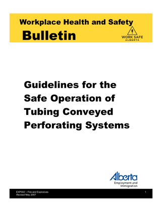 Picture of Guidelines for Safe Operation of Tubing Conveyed Perforating Systems