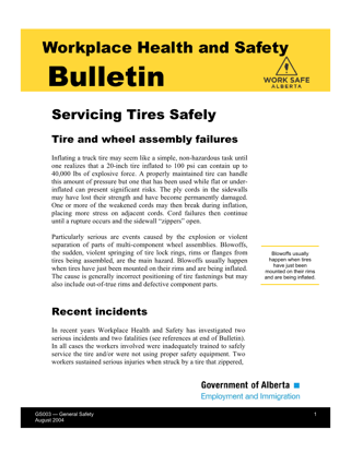 Picture of Servicing Tires Safely