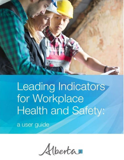 Picture of Leading Indicators for Workplace Health and Safety:  A user guide