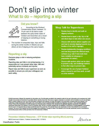 Picture of Don't slip into winter 3: Reporting a slip