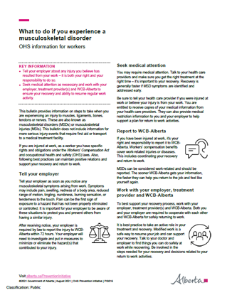 Picture of Addressing workplace MSDs - What to do if you experience musculoskeletal disorder